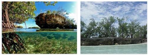 Aldabra Atoll (World Heritage)